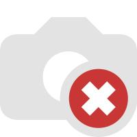 Aktionen im Stamm online Store München
