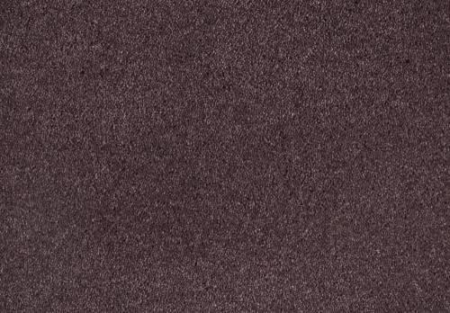 Shag Superior Loft, Purple, 5,00 m breit,