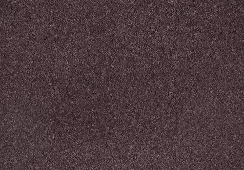 Shag Superior Loft, Purple, 4,00 m breit,