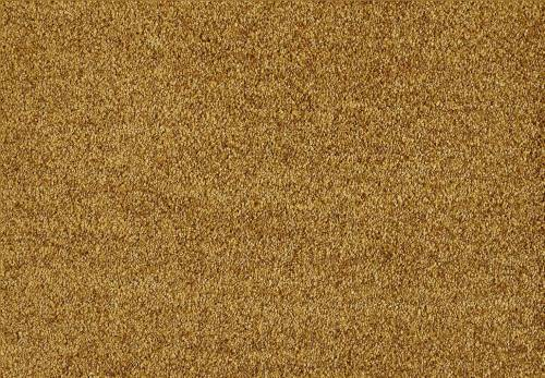 Shag Superior Suite, Gold, 5,00 m breit,