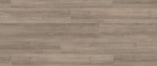 Laminat Premium, Coastal Oak