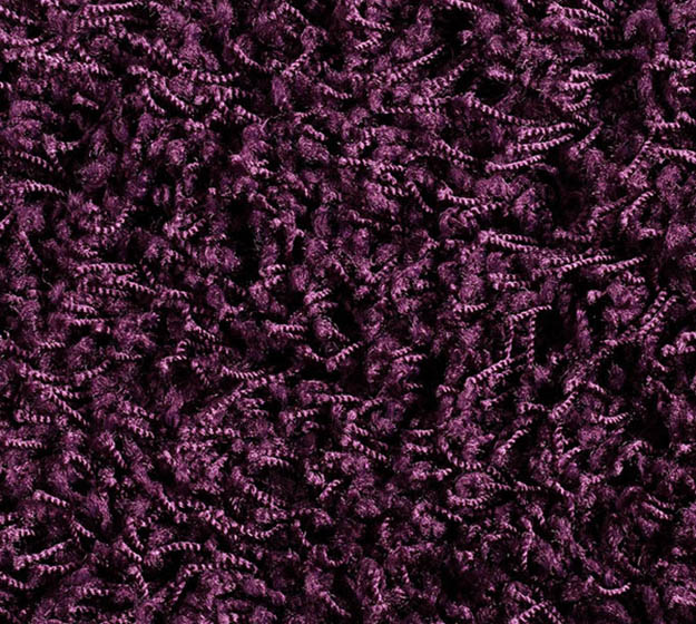 Shag Alexis - violett, 1P66 im Stamm online Store München