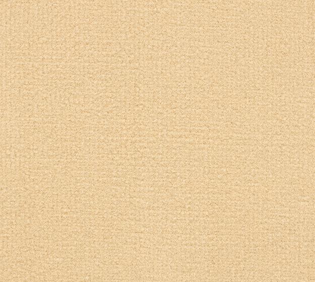 Velours Business - beige, 2V23 im Stamm online Store München