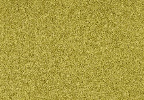 Shag Superior Suite, Curry, 4,00 m breit,