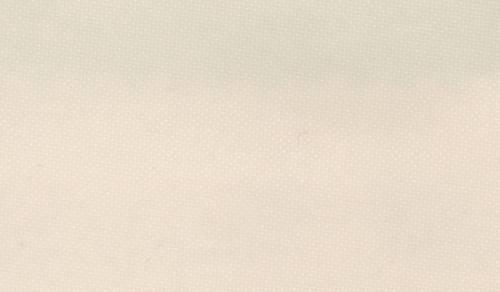 TCS-Taft 507 creme, 3,10 m breit