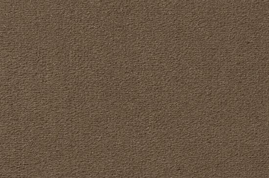 Velours Superior Studio, beigegrau, 5 m breit,, 2VS10-5 im Stamm online Store München
